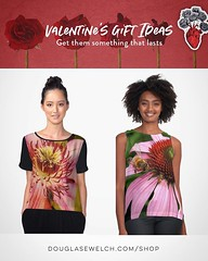 Looking for Valentine's Day Gifts? Check out these tops and much more! Exclusively from DouglasEWelch.com/shop #valentinesday #valentines #garden #plants #flowers #plants #colors #nature #products #gifts #cards #clothing #arts #crafts #technology #iphone (dewelch) Tags: ifttt instagram looking for valentine's day gifts check out these tops much more exclusively from douglasewelchcomshop valentinesday valentines garden plants flowers colors nature products cards clothing arts crafts technology iphone samsung cases bags totes prints home housewares journals pillows clocks mugs