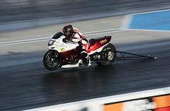 Honda Blackbird Turbo_3674 (Fast an' Bulbous) Tags: bike biker moto motorcycle fast speed power acceleration drag strip race track outdoor nikon panning dragbike racebike