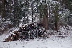MADE IN AUSTRIA (LitterART) Tags: nakita madeinaustria styria bike bicycle ebike forest wood sonyrx100