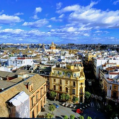 View from Seville Cathedral Bell Tower (FotoFling Scotland) Tags: belltower flickr rooftops seville sevillecathedral