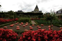 O'Lantern Family (Loredana Consoli) Tags: pumpkin orange villandry loira valledellaloira châteauetjardinsdevillandry jackolantern france zucca zucche arancione