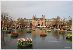 Netherlands - Amsterdam - Rijksmuseum (ottilia dozsa) Tags: netherlands hollandia amsterdam rijksmuseum museum muzeum rijks water viz flower virag tulipan tulip building epulet architecture cuypers ycabi xbrnfkbgbalwr