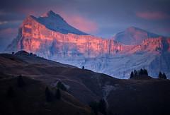 Dolomites Sunset - Sasso di Santa Croce (Bill Higham) Tags: heiligkreuzkofel sassodisantacroce sunset dolomites italy escarpment billhigham
