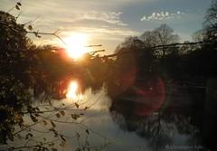 Reflective (C.Kalk DigitaLPhotoS) Tags: sunset sonnenuntergang reflektion reflection sun sonne sunshine lensflare wasser water waterreflection abends abendstimmung evening abendsonne photo foto photography fotografie outdoor
