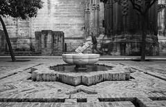 acqua (laura sinapi) Tags: siviglia sevilla cattedrale cathedral acqua water fontana fountain biancoenero bw blackwhite bn blackandwhite