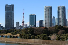 Tokyo (seiji2012) Tags: 東京 築地大橋 東京タワー 浜離宮恩賜庭園 japan tokyo building tokyotower