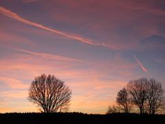 Ruhe...... (elisabeth.mcghee) Tags: bäume trees eiche oak oaktree himmel sky wolken clouds landscape landschaft abendrot abendhimmel sunset unterbibrach oberpfalz upper palatinate