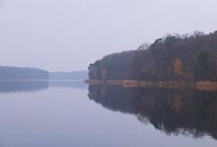 Góreckie Lake - late autumn ride in Wielkopolski National Park (dominikpl72) Tags: poland polen polska wielkopolska autumn bicycle cycling fuji fujifilm x10