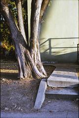Back steps (ADMurr) Tags: la windsor square 5th st miss havesham leica m6 50mm summicron kodak 200 dab3532