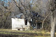 Blue Roof and Dormer (Mick L.) Tags: blueroofanddormer farm house ruin derelict blue