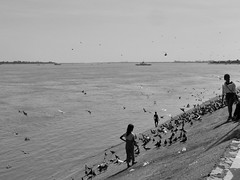 Au bord du Mékong, Phnom Penh,  Cambodge, novembre 2018. Along the Mekong riverbanks, Phnom Penh, November 2018. (vdareau) Tags: river fleuve eau water mekongriver mékong phnompenh asiedusudest southeastasia asie asia cambodia cambodge
