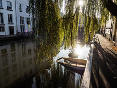 Canal Walk in Ghent (Feldore) Tags: belgium ghent canal weeping willow autumn beautiful light boat feldore mchugh em1 olympus 1240mm reflection hanging belgian scenic scenery