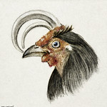 Head of a rooster (1816) by Jean Bernard (1775-1883). Original from The Rijksmuseum. Digitally enhanced by rawpixel. thumbnail