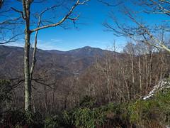 Cold Mountain, Pisgah National Forest, North Carolina (netbros) Tags: pisgahnationalforest blueridgeparkway northcarolina coldmountain mile412 netbros internetbrothers