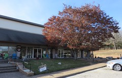 Post Office 72529 (Cherokee Village, Arkansas) (courthouselover) Tags: arkansas ar postoffices sharpcounty cherokeevillage arkansasozarks ozarkmountains northamerica unitedstates us