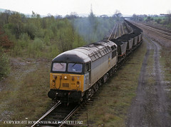 BR Class 56 No 56006 Codnor Park Sidings MGR 22nd April 1992 (robinstewart.smith) Tags: br class 56 mgr codnor park sidings 1992