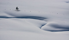 snow bend (cs_one) Tags: shadow landscape winter nature water copy minimal space background cold frosty white sörenberg snowfield weather scenic snow noperson concept isolated mountain ice frozen