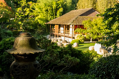 Le jardin japonais (FrenchW) Tags: xtransformer iridient toulouse hautegaronne france fr