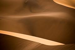 Erg Chebbi, Maroc (mgirard011) Tags: merzouga maroc paysage ergchebbi photographie afrique randonnée minimaliste environnementnaturel désert lieux activités voyage orange thématiques activities africa desert hiking landscape morocco minimalist photography places themes travel meknèstafilalet ma