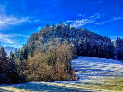 Winter forest on Thierberg mountain in Tyrol, Austria
