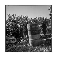 texaco 2 • nelson, nv • 2018 (lem's) Tags: texaco barril tank cactus nelson oil huile gas essence nv nevada ghost town ville fantome rolleiflex t