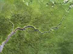 Wetlands (milfodd) Tags: july 2018 aerialphotography quadcopter dji drone phantom4pro wetlands