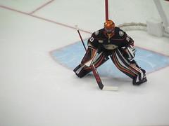 IMG_5181 (Dinur) Tags: hockey icehockey nhl nationalhockeyleague avalanche avs coloradoavalanche ducks anaheimducks