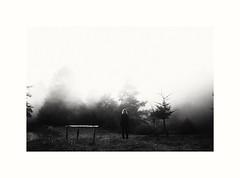 Into the wild. (papaianniluca1) Tags: girl old fog vintage noir trees mountain biancoenero bnw woman nature monochrome atmosphere highcontrast creepy weird freak sony mystery