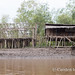 Asmat longhouse under construction