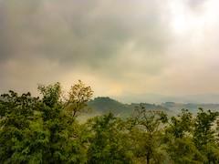 Nebbia d'oro (mitopoietico) Tags: nebbia fog gold golden oro urbino montefeltro marche landscape fogscape trees alberi colli hills