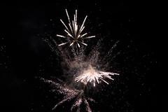 HAPPY NEW YEAR (charliejb) Tags: 2019 fireworks sky smoke black night pyrotechnics light cordite happynewyear hny bristol westburyontrym