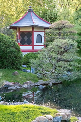 Japanese Garden #6 - Pagoda Vertical (Patti Deters) Tags: japanese garden pagoda building red water stream wood wooden painted calm peaceful island trees stones architecture park scenic outdoors landscape japanesegarden normandalecommunitycollege minnesota pattideters roof shoreline 6