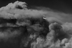 Flying past a Firestorm (rikioscamera) Tags: lax losangelesinternationalairport aircraft airlines bw blackandwhite d750 flight lightroom monochrome nikon silverefexpro sky smoke wildfire firestorm