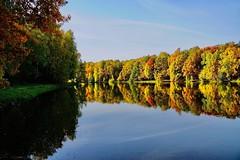 Pacification (prokhorov.victor) Tags: природа пейзаж лес озеро вода отражение осень деревья