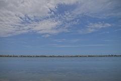 Vista das casas da praia de Piratininga (mcvmjr1971) Tags: ilha do pontal piratininga lagoa nikon mmoraes d800e lens sigma 2435 art