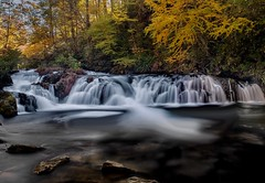 Along the Tellico River, Cherokee National Forest, Tennessee (Anne Strickland) Tags: autumnintennessee longexposure waterfall tennesseemountains baldriver cascades rapids whitewaterrafting appalachianmountains northcarolina tellicoriver cherokeenationalforest troutstream