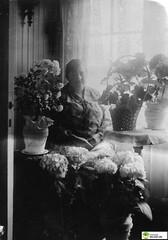 tm_6061 (Tidaholms Museum) Tags: svartvit positiv fotografier blomvas blomkorg uppvaktning interiör möbler
