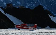 Size isn't important... (arcticrail) Tags: airplane aircraft airplanes action cessna 185 skywagon skiplane ski plane prop ruth alaska ak aviation denali nikon national park