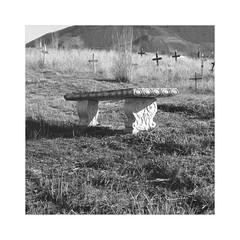 the bench (Bernie Vander Wal) Tags: yashicamatem shanghaigp3 d76