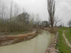 DSCN0054 (Gianluigi Roda / Photographer) Tags: springtime april 2013 creek creeks lavinocreek rainydays springrains