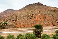 20181113-248 (sulamith.sallmann) Tags: landschaft natur afrika atlas atlasgebirge berg berge gebirge marokko mountain mountains sulamithsallmann