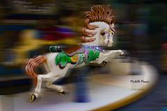 Escape! (lamoustique) Tags: carousel horse escape blur surreal