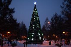 hd_20181203173021 (anatoly_l) Tags: russia siberia kemerovo city winter december 2018 snow christmas tree