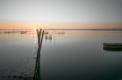 L' Albufera - at its best (Sonia gsgs) Tags: albufera valencia spain lalbufera nikon nikonphotography d3300 tokina 1116mm le leshots water plants sun sunset mood longexposure