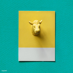 Yellow bulls head on paper (Rawpixel Ltd) Tags: abstract animal background bull bullshead card colorful concept cow creative decoration figure fun green head horns joy little mini miniature model name ox paper pattern play shape small symbol textured tiny toy yellow