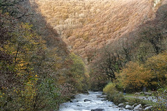 View downstream from Watersmeet (chairman.bill) Tags: exmoor devon watersmeet riverlyn river autumn fall forest woodland