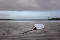 Low water (01.01.2019) (Siebbi) Tags: beach strand kanister canister buoy boje schwimmer floater sand lowwater niedrigwasser ostsee balticsea