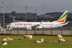 ET-AVJ Boeing 737 Max-8 - Ethiopian Airlines (eigjb) Tags: dublin airport eidw ireland international collinstown jet transport airliner aircraft airplane plane spotting aviation aeroplane etavj boeing 7378 max ethiopian b737 737 b38m delivery flight eth9201 airlines max8 sheep farm monks