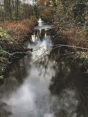 🍂🍁 #autumnwalks #longexposure  #ynysmaerdy #riverely #wales #shotoniphone #shotoniphonexs #autumn #photography (seanajax) Tags: autumnwalks longexposure ynysmaerdy riverely wales shotoniphone shotoniphonexs autumn photography