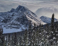 Mountains along the Icefields Parkway near Bow Lake in Banff National Park, Alberta Canada (PhotosToArtByMike) Tags: icefieldsparkway banffnationalpark canadianrockies banff albertacanada bowlake mountain mountains alberta